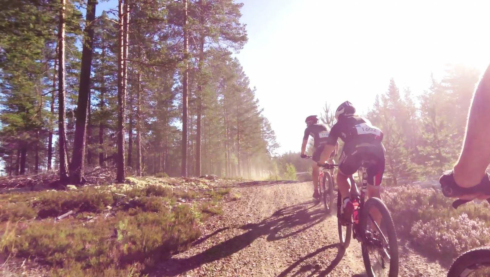 cykelvasan-2015