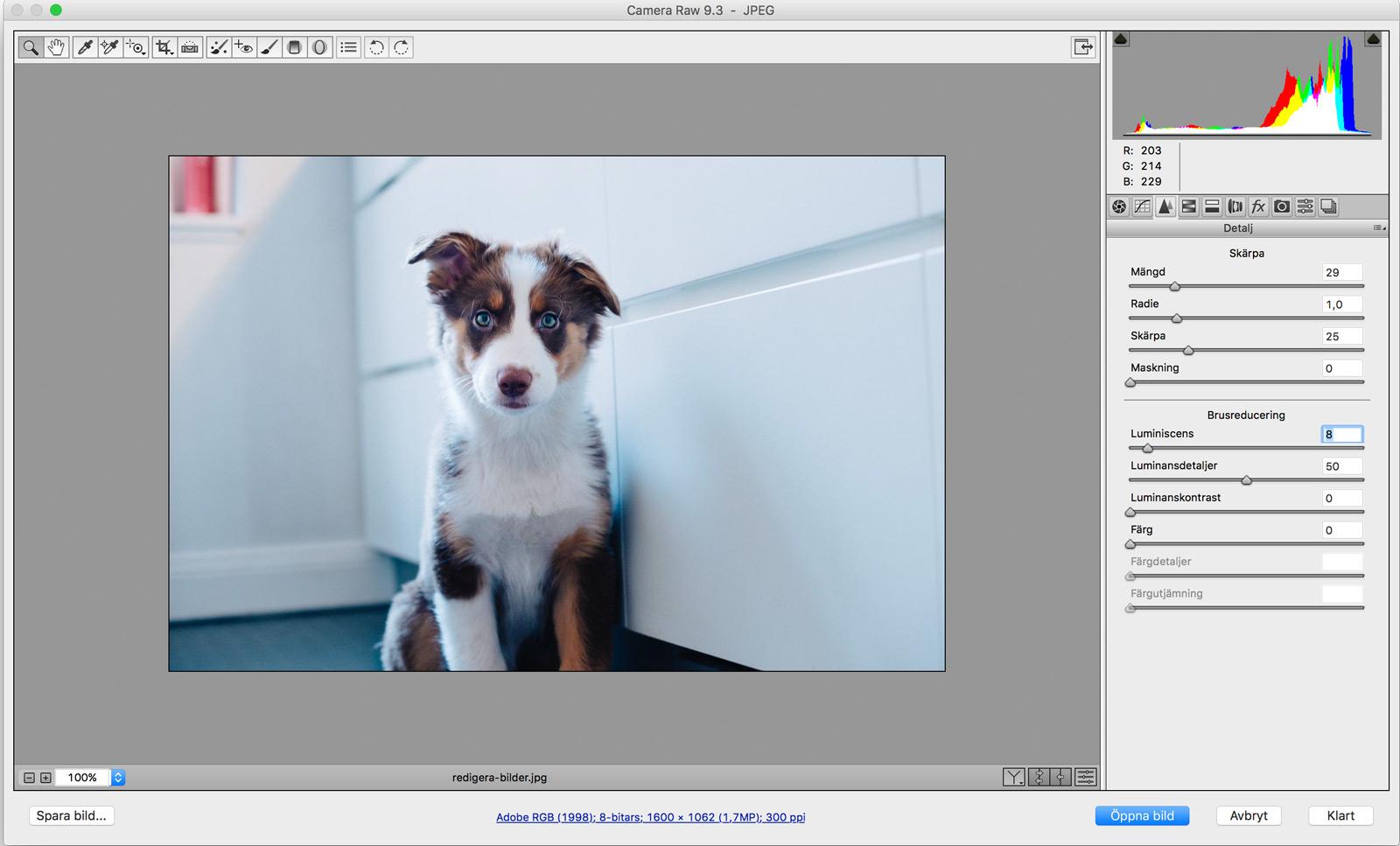 redigera-bilder-i-camera-raw-2