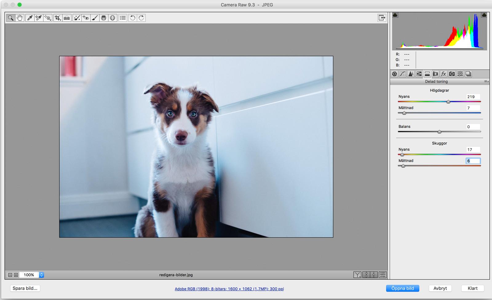 redigera-bilder-i-camera-raw