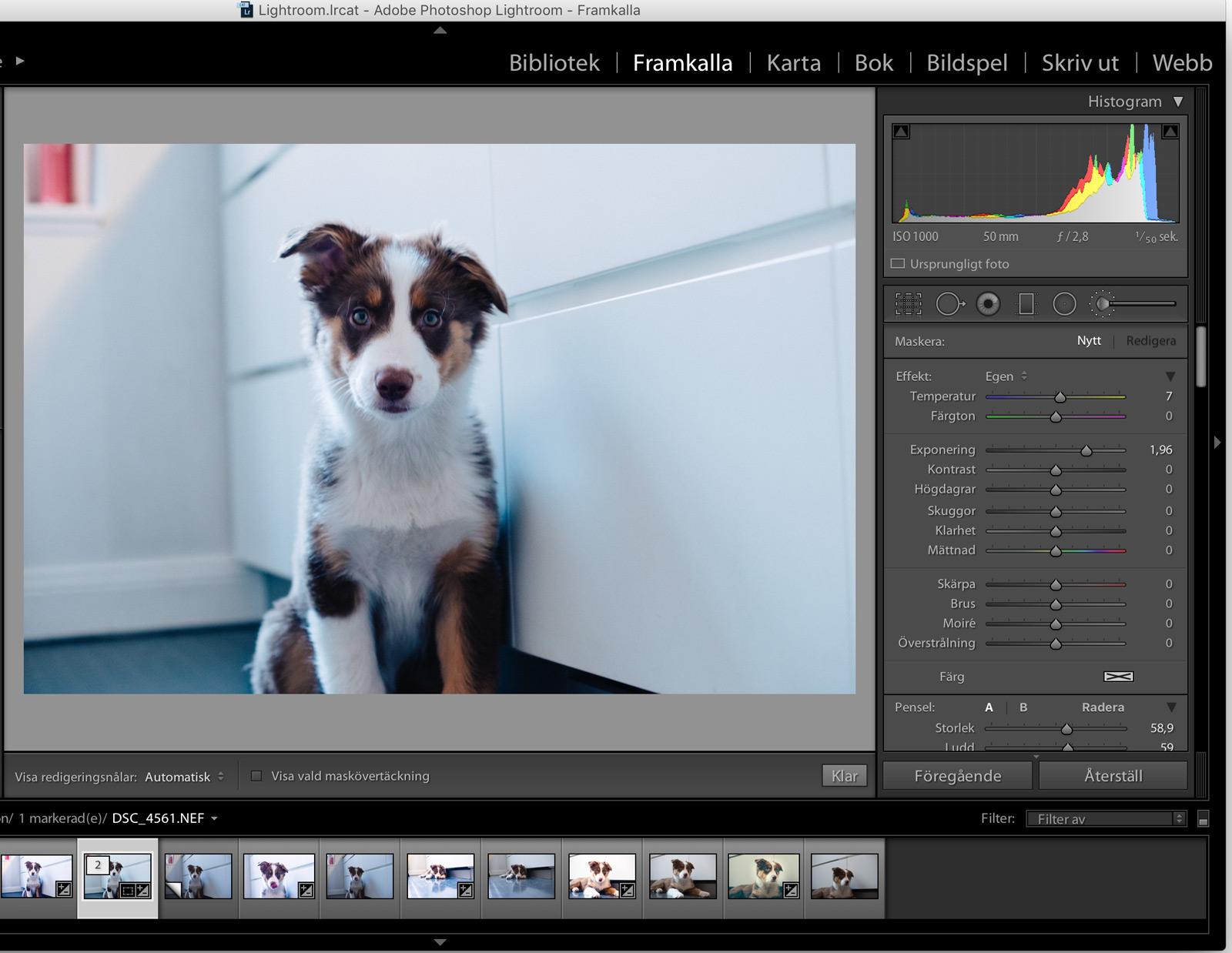 redigera-bilder-i-lightroom-9