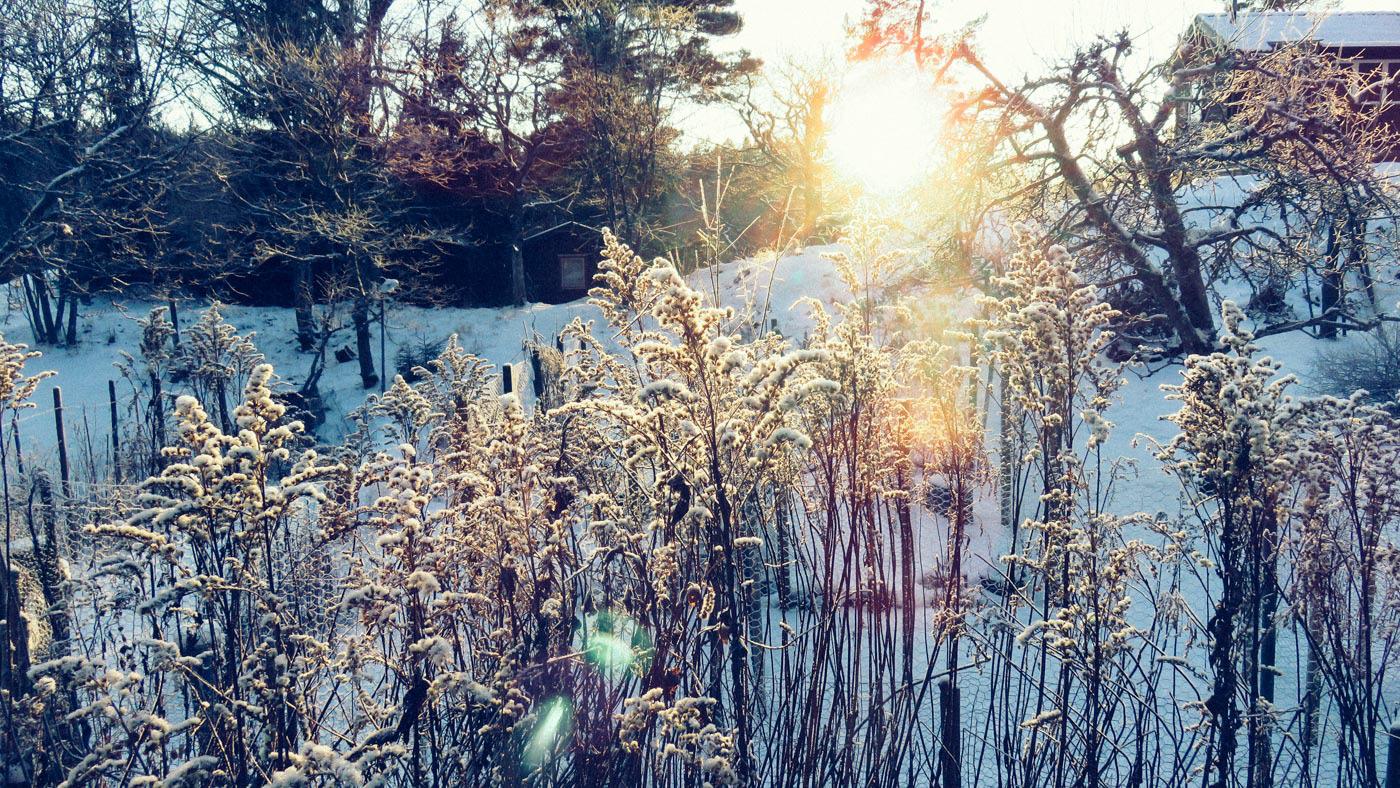 jessica-vinter-8